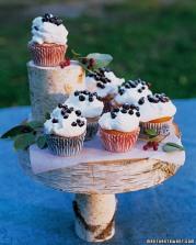 mla102659_0707_cupcakes_xl